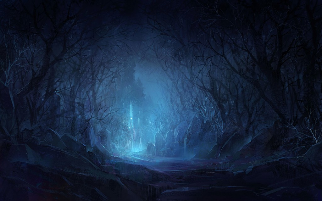 Forest-blog-night4.jpg